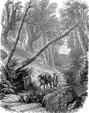 Engraving of packhorse track in regular use